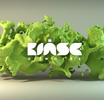 kinseartworks
