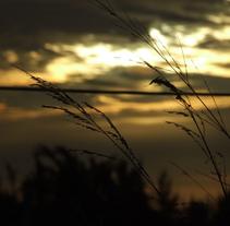Fotos de paisajes. Un proyecto de Fotografía de Denisse Loría         - 15.08.2010