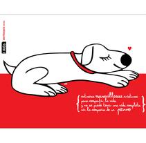 Libretas AlCo. Um projeto de Design e Ilustração de AlCo Diseño         - 03.12.2010