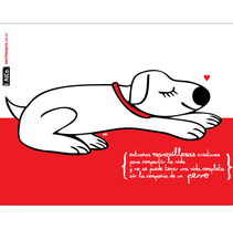 Libretas AlCo. A Design&Illustration project by AlCo Diseño         - 03.12.2010