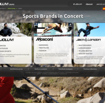 Joluvi.com. A Design, Software Development, UI / UX&IT project by Fer Iglesias - 30-12-2013