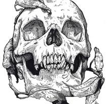 Skull. Un proyecto de Ilustración y Bellas Artes de Ana Marín - Jueves, 19 de diciembre de 2013 00:00:00 +0100