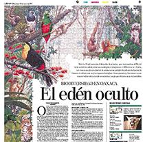 Páginas de periódico. Um projeto de Direção de arte, Design editorial e Design de informação de Alejandro Sosa         - 30.04.2004