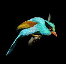 Birds. Um projeto de Design, Ilustração e Artes plásticas de Melanie Rosenthal         - 23.05.2015