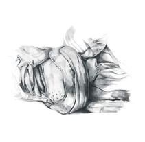 Zapatillas. Um projeto de Ilustração de Olga Valeeva - 24-03-2014