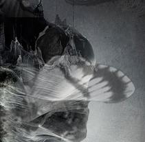 Transmutación. A Photograph, and Collage project by Mª Concepción Tomás Rivera         - 15.06.2015