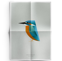 BIRDS. A Design, Graphic Design, Illustration, and Advertising project by Manuel Martin - 07.02.2015