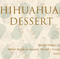 CHIHUAHUAN DESERT. A Shoe Design project by Beatriz Torres Carbonell         - 04.10.2015
