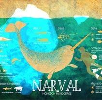 Narval. Un proyecto de Ilustración de Clara  Fort         - 18.09.2015