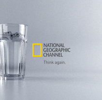 NATIONAL GEOGRAPHIC ID´S. A Film, Video, TV, 3D, Animation, and Art Direction project by Fernando Domínguez Cózar - 21-11-2008