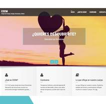 web profesional con WordPress. A Graphic Design, and Web Design project by Mercedes Méndez - 07-01-2017