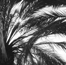 Landscapes . Un proyecto de Fotografía de Amaia Gómez Coca         - 06.02.2017