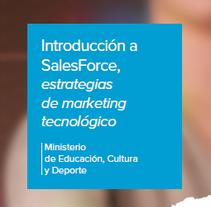 Moodle Introducción a Salesforce, estrategias de marketing tecnológico - Aula Mentor. Un proyecto de Diseño y Educación de Isi Cano - 21-11-2016