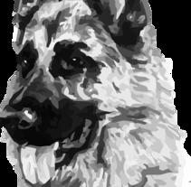 Perfiles del pastor alemán. Un proyecto de Ilustración vectorial de perrosdelmundo10 - 24-04-2017