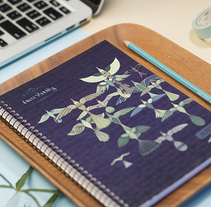 Cuadernos. Um projeto de Ilustração e Diseño de patrones de Laura Varsky         - 13.07.2017