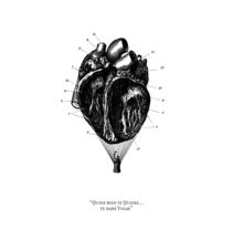 Cardiografia. A Illustration project by PERRORARO  - 15-07-2015