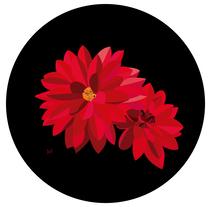 Ilustración 'Red Dhalias'. A Design, Illustration, Graphic Design, and Vector illustration project by Sandra Martínez Arroyo         - 20.12.2017